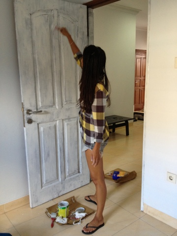 Painting My House