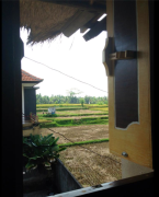 Bedroom Rice Field View