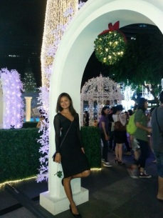 Christmas on Orchard Road