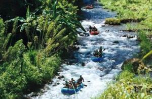 Rafting in Balinese serenity in August.
