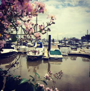 Baltimore City Harbor
