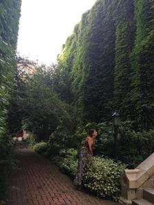 So beautiful hidden in the city.